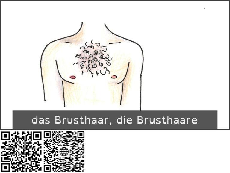 brustbehaarung